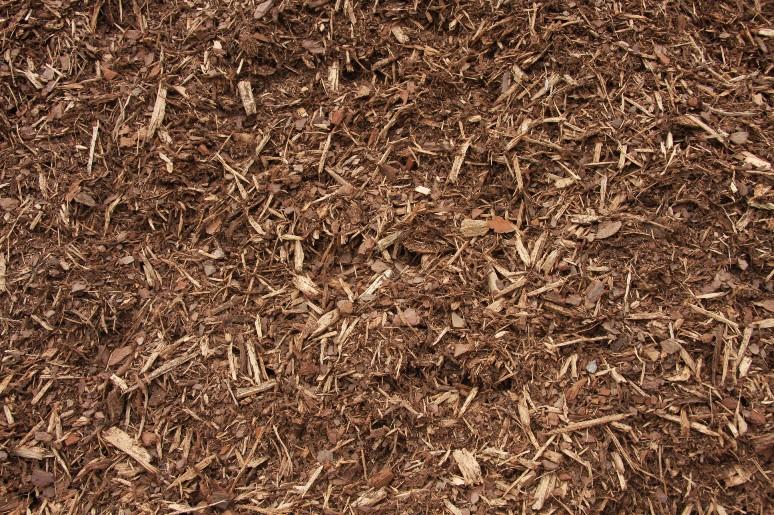 Green Bark Biofuels